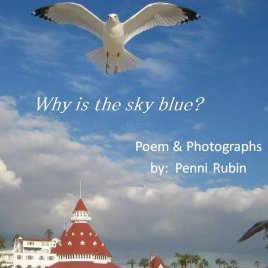 Why Is The Sky Blue? by Penni Rubin